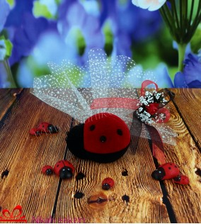 Uğur Böceği Nikah Şekeri KT109