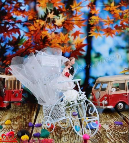 Bisiklette Gelin Damat Nikah Şekeri
